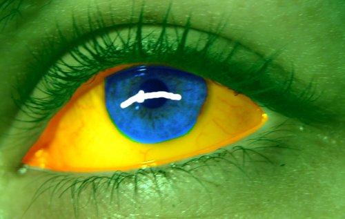 bandeira-brasil2