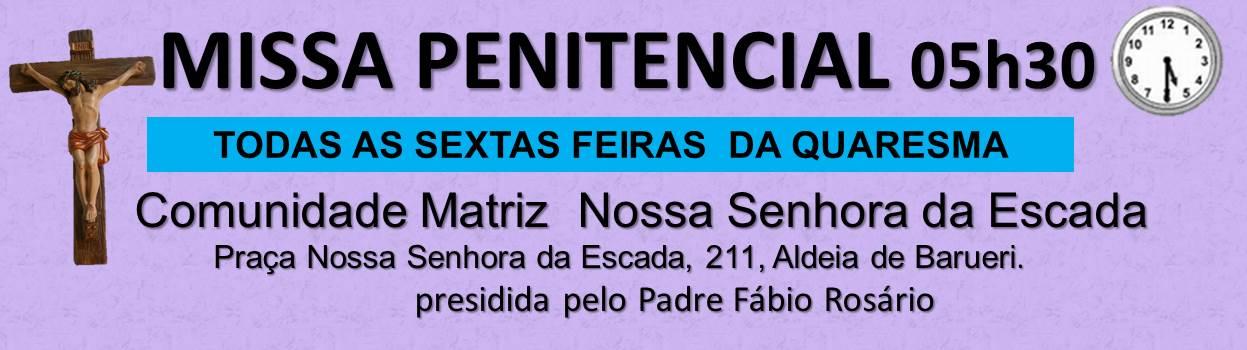 Novo highlight – M. penitrncial 2018